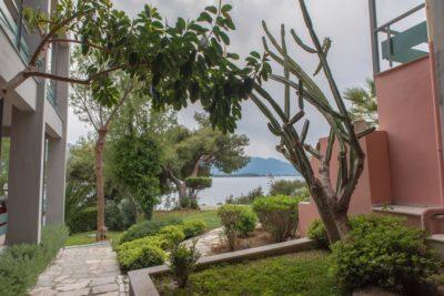 Xenia Poros Image Hotel (18)